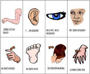 Jornadas anuales de Daño Cerebral Adquirido - ADACEBUR