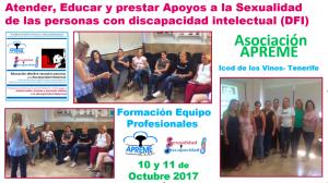 Formación de Profesionales APREME- Educación y Atención a la Sexualidad  de las personas con Discapacidad Intelectual
